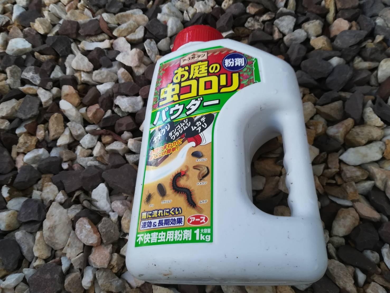 カブトムシを飼おう!≪蟻が大量発生した時の駆除方法≫
