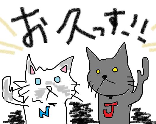 これで猫ブログ全部引っ越し完了です!≪前の日記より⑳≫