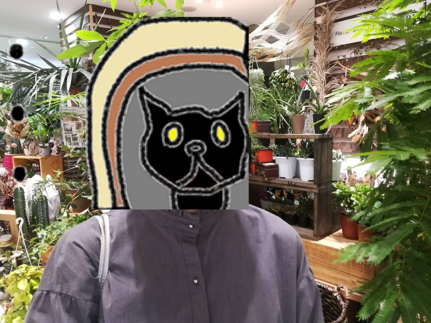 町田の植物屋「VERY VERY」に行ってきた。