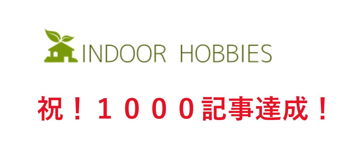 ブログ1000記事達成!いつもありがとうございます!