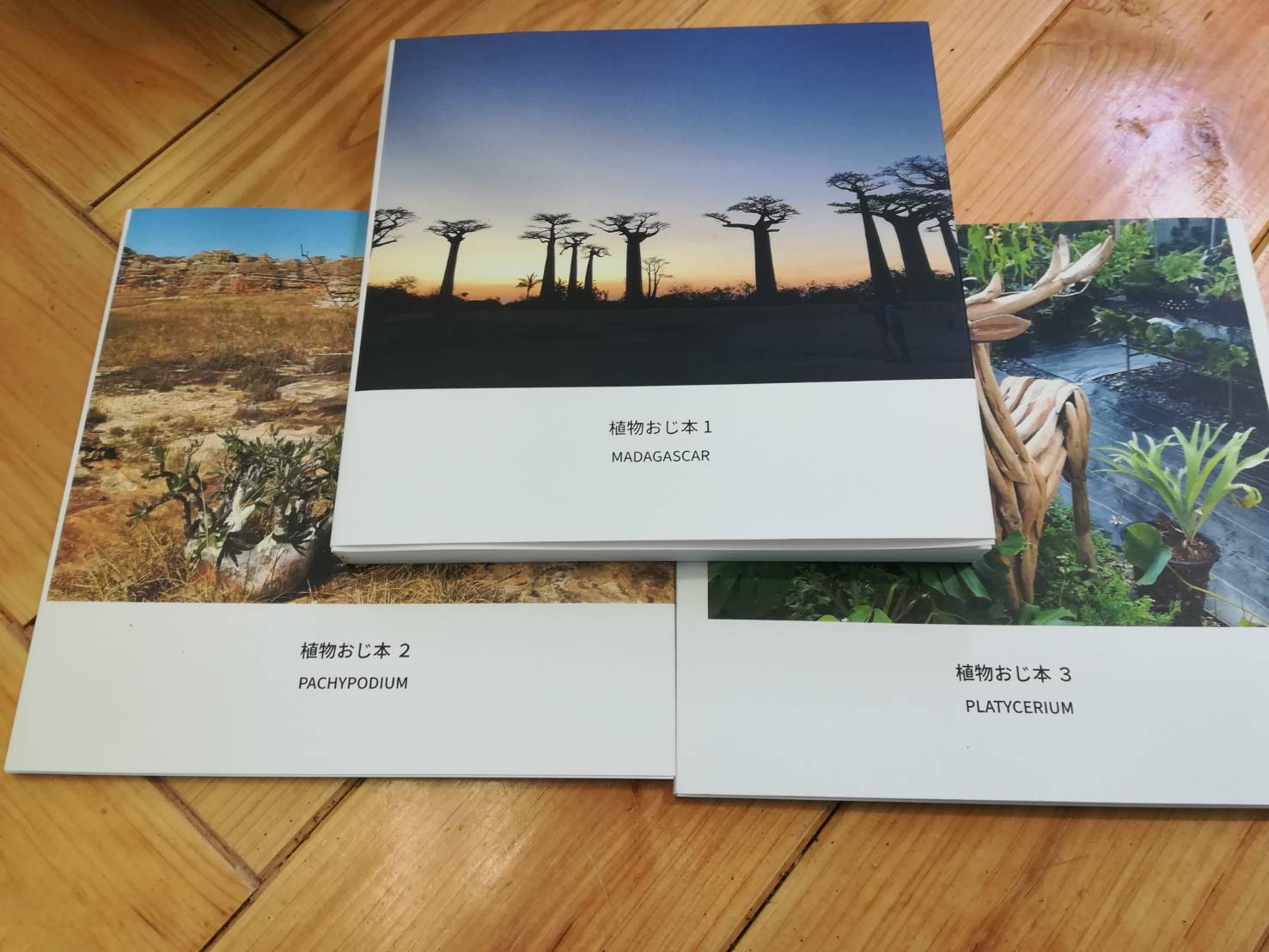 植物系インスタグラマー「植物おじさん」の自生地写真集に感動。