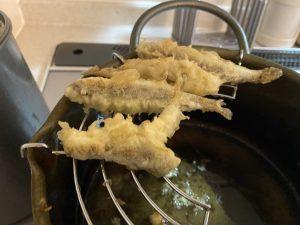 城ヶ島で釣ったハゼがめちゃくちゃ美味いんですけど!