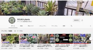 2021年おすすめ植物系YouTubeはコレだ!!